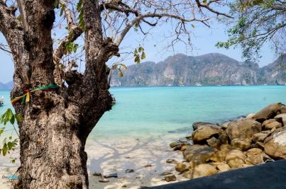 PhiPhi Phuket camera-44