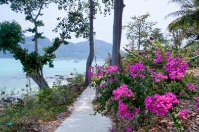 PhiPhi Phuket camera-58