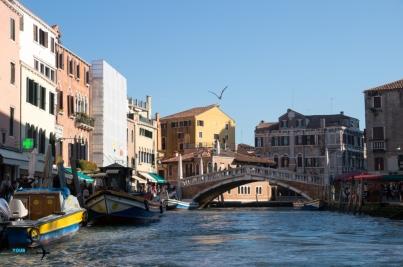 Travel - Venice Italy-8