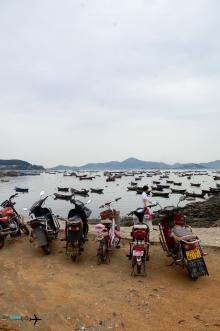 Camping Guang Lu Dao Island-93